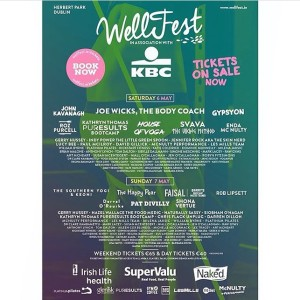 Wellfest flyer